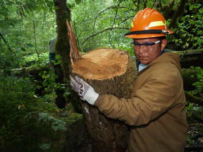 Trump Administration To Close 2 Northwest Forest Service Job Training Centers