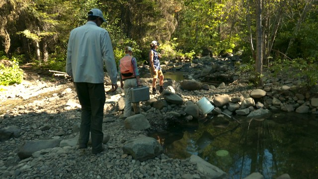(From left) Trout Unlimited Field Coordinator Gregg Bafundo, Restoration Ecologist Crystal Eliot-Perez and Fish Not Gold Campaign Director Kim McDonald survey streambed impacts from recent dredging activity.