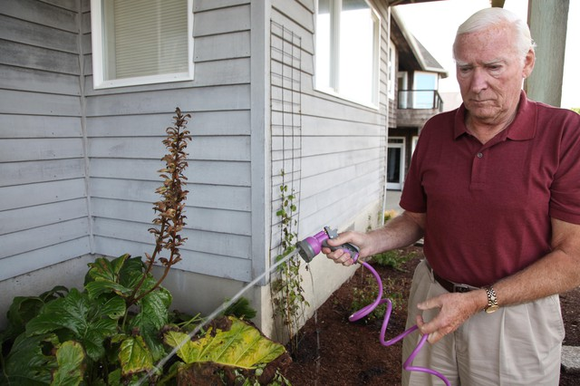 Cannon Beach resident Peter Anderson said his grand children enjoy the bunnies. But there are too many of them and they eat his flowers.