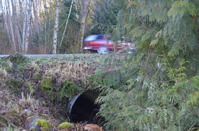 This road culvert is too small for the stream it carries, causing the roadbed to erode.