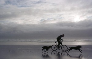 The rainy Oregon Coast weather didn't stop this mountain biker from a vigorous ride on Baker Beach near Florence with his dogs.