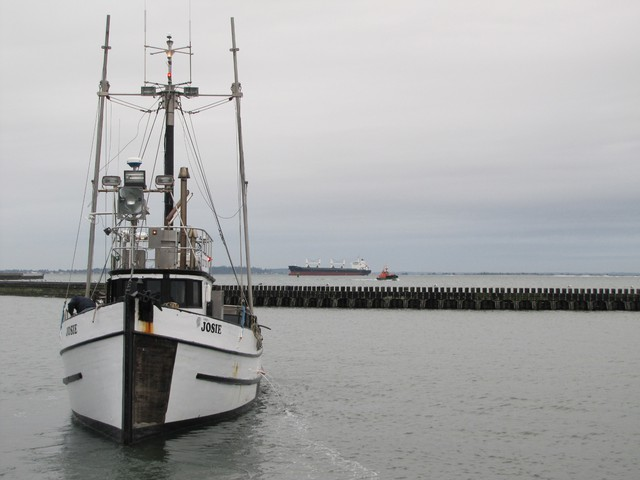 A Quinault Indian Nation fishing boat comes in to unload its catch in Grays Harbor, not far from the locations of three proposed oil train-to-ship facilities.