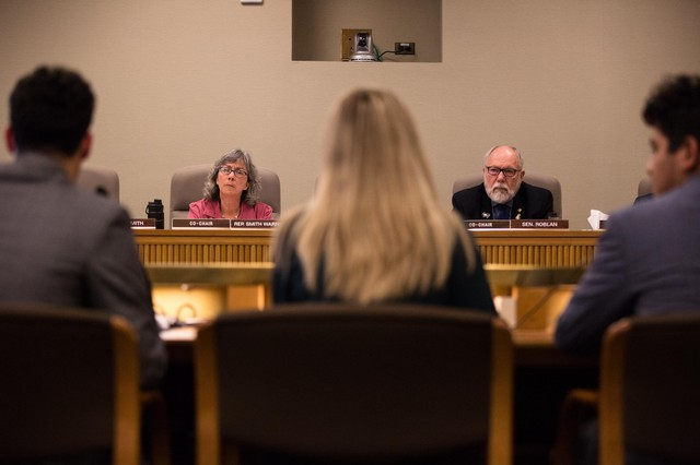 Co-chairs Rep. Barbara Smith Warner, D-Portland, and Sen. Arnie Roblan, D-Coos Bay, listen to testimony on House Bill 2019 before the Joint Committee on Student Success at the Oregon Capitol in Salem, Ore., Thursday, April 11, 2019.