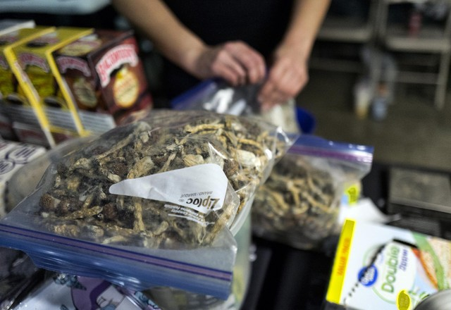 """A vendor bags psilocybin mushrooms at a pop-up cannabis market in Los Angeles on Monday, May 6, 2019. Voters decided this weekthatDenver will become the first U.S. city to decriminalize the use of psilocybin, the psychedelic substance in """"magic mushrooms."""""""