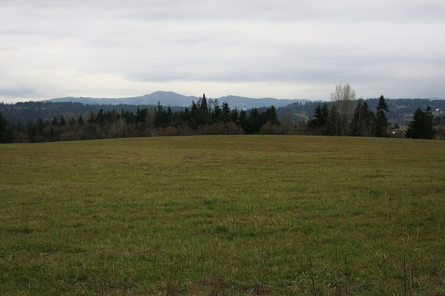 The 152 acres near La Center, Washington was once a dairy farm, before it was purchased for the Cowlitz Indian Tribe by a developer more than a decade ago.