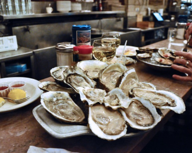 Oysters like these are the end result of complicated agricultural techniques.
