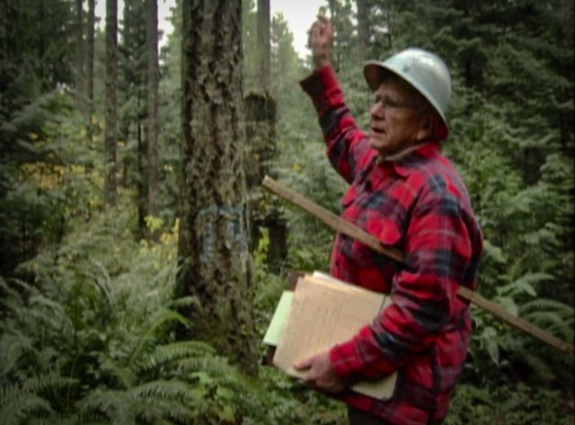 Wendell Harmon shares his philosophy of forestry management, 1994.
