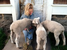 Jeanne Carver with lambs from Imperial Stock Ranch
