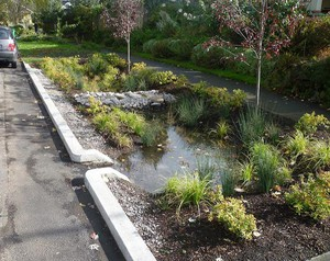 """A """"green street"""" project in Portland designed to absorb stormwater and prevent sewer backups and overflows."""