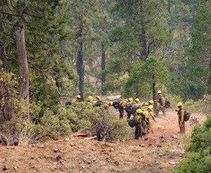 A 20-person contract crew from Eugene, Oregon, working the Klondike Fire on Aug. 9, 2018, builds a fire line from Illinois River Road toward the river itself.