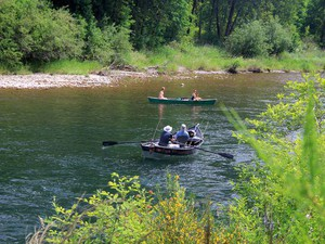 The number of steelhead returning to the North Santiam River is at its lowest level in recorded history.