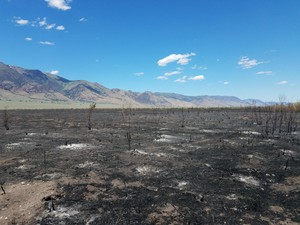 In 2017, the Fields-Andrews rangeland fire protection association helped put out a fire near Steens Mountain in southeastern Oregon.
