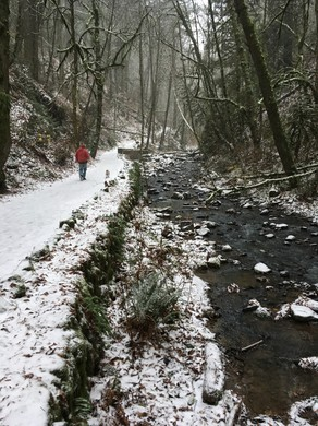 Snow blankets Balch Creek in Northwest Portland, Sunday, Dec. 24, 2017.