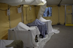 Oiled mallard ducks recuperate in cribs inside heated tents after a Sunnyside oil spill.
