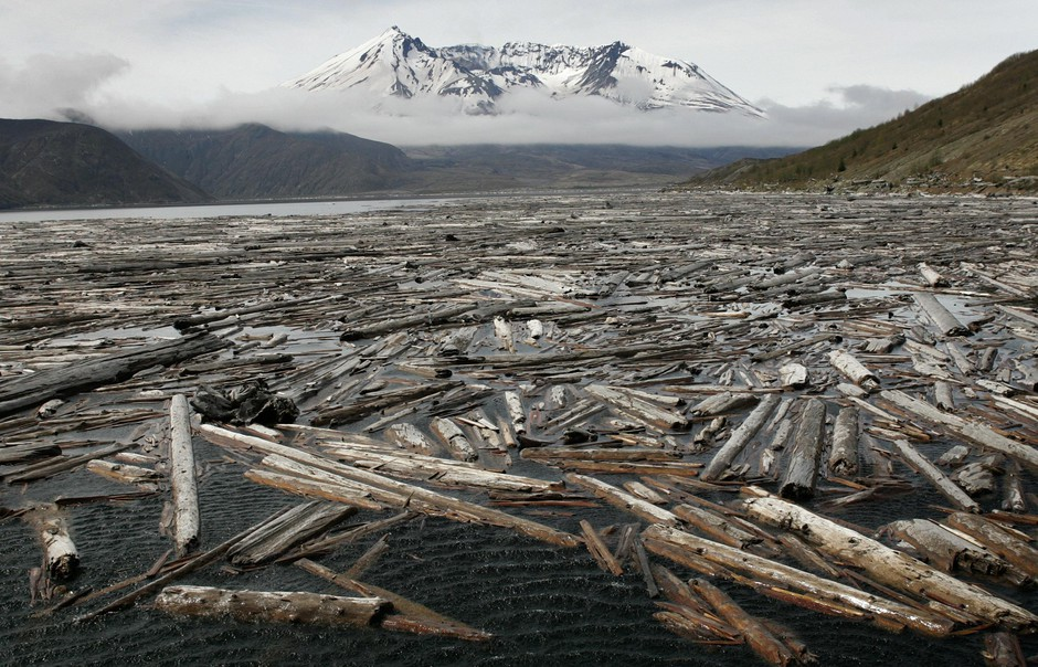 Driftwood in Spirit Lake is seen with Mount St. Helens in the background, Thursday, May 12, 2005, at Mount St Helens National Monument, Wash.
