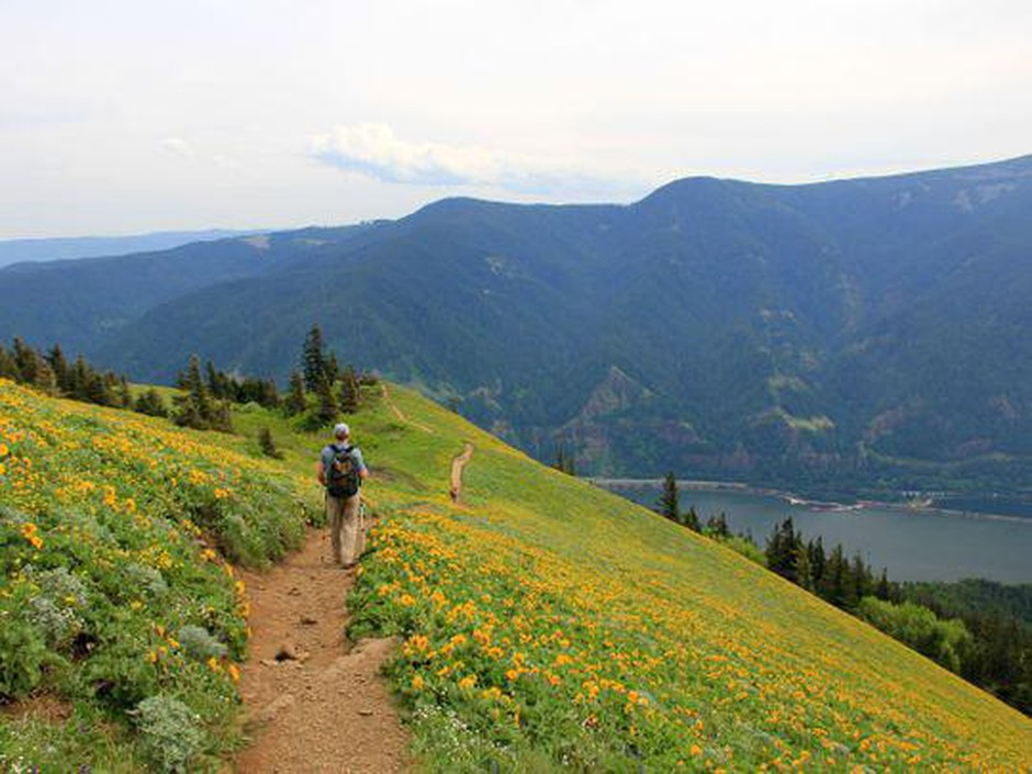 Best challenging hikes in the Columbia River Gorge: No. 3 — Dog Mountain Loop