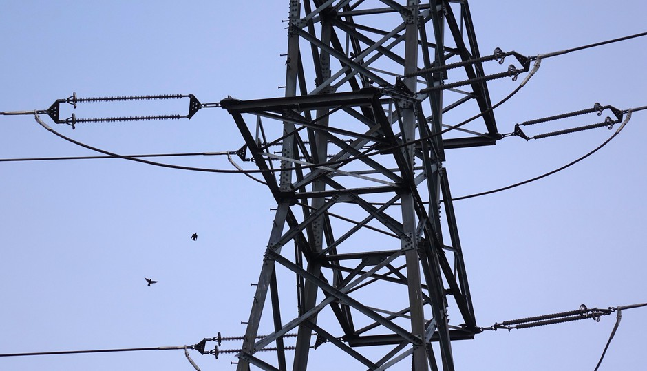 Small birds swarm a PGE transmission tower near Portland.