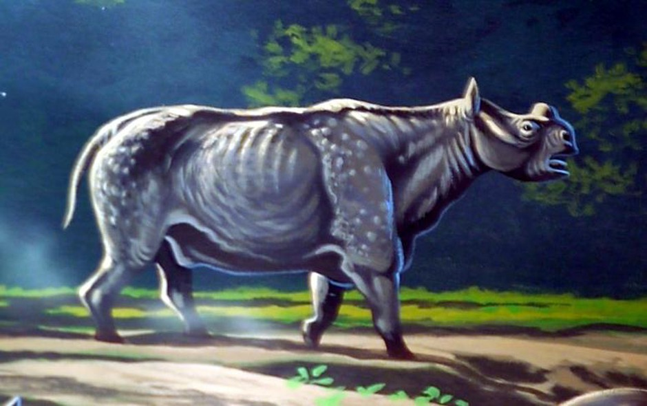 The John Day mesonychid would have shared its range with large herbivores like Protitanops, a relative of modern rhinos.